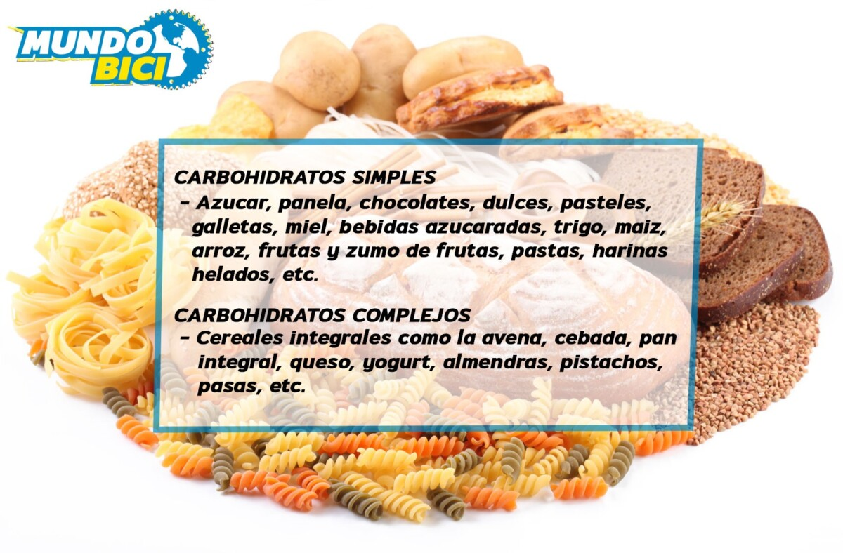 IMPORTANCIA DE LOS CARBOHIDRATOS