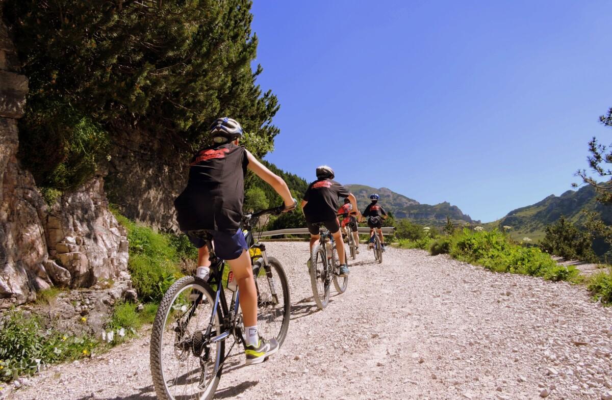 pelotón ciclismo